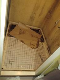 浴槽撤去解体
