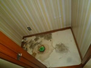 既存トイレ撤去