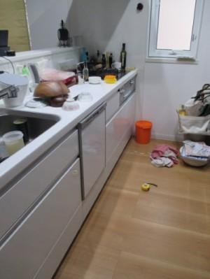施工前食器洗い機