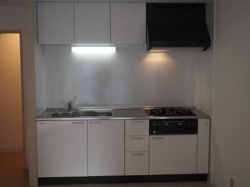 タカラスタンダードのホーロークリーンキッチンパネル貼りのシステムキッチン