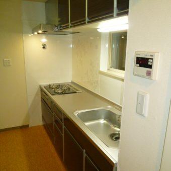 卓越した収納力と機能性「レミュー」へのキッチンリフォーム 恵庭市マンション
