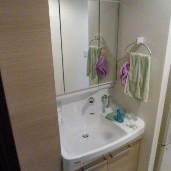 大きく使える「LLボール」が広く使いやすい洗面空間を実現!札幌市